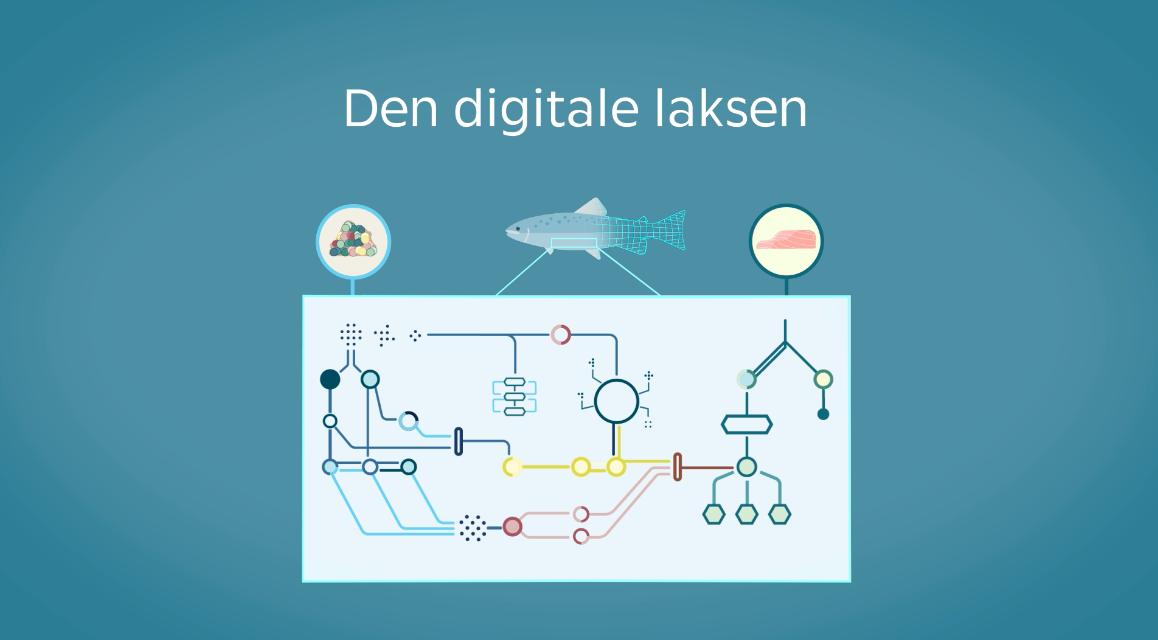 NMBU 'Den Digitale Laksen'
